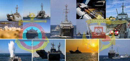 Dywizjon Okrętów Transportowo - Minowych